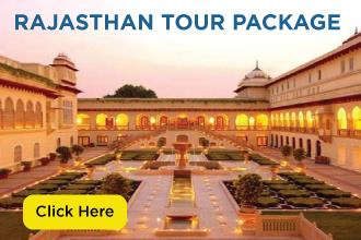 india rajasthan tour package cost